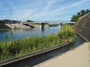 下田井堰(五十鈴川)から取水された用水