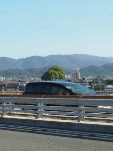 宮川大橋から望む宇須乃野神社(豊受大神宮 摂社)の社叢