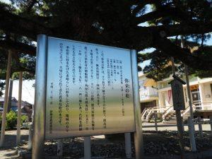 弥栄の松の説明板(日保見山八幡宮)