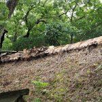 屋根の一部が剥がれている御塩殿、御塩殿神社(皇大神宮 所管社)