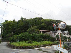 宇治山田神社の社叢(興玉森)
