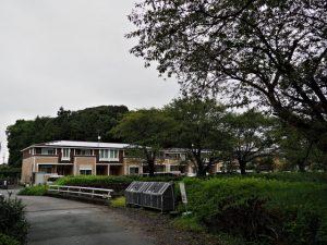 境橋(滝倉川)付近から望む興玉森、宇治山田神社の社叢