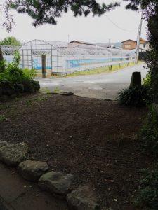 参道入口付近に残された多数の足跡、御塩殿神社(皇大神宮 所管社)