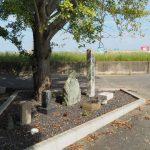 整備された甫蔵主池の隅に集められた石像遺物(伊勢市一之木と御薗町長屋の境界付近)