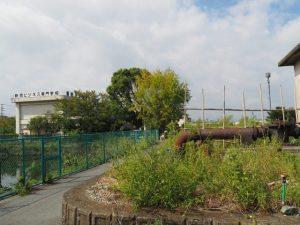 整備された甫蔵主池(伊勢市一之木と御薗町長屋の境界付近)