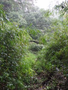 多岐原神社(皇大神宮 摂社)から三瀬の渡し跡へ