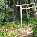 熊野古道から見かけた鳥居の先へ