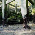 傷みが激しい虎石の木柵、鏡宮神社(皇大神宮 末社)