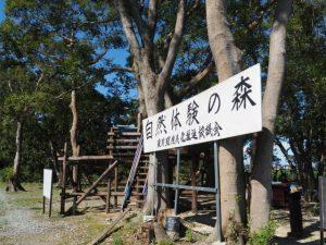 自然体験の森(明和町佐田)