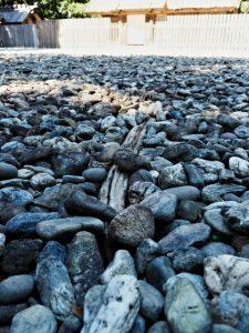 斎庭で見つけた太い根は?、神服織機殿神社(皇大神宮 所管社)
