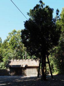 八尋殿前の斎庭、神麻続機殿神社(皇大神宮 所管社)
