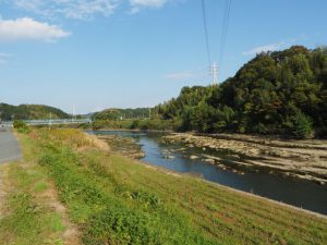 五十鈴川の左岸堤防(伊勢二見鳥羽ライン〜堀割橋)