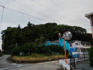 興玉森、宇治山田神社(皇大神宮 摂社)の社叢