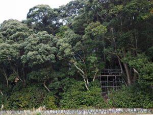 御用材運び入れのための仮設台が設営された朝熊神社(皇大神宮 摂社)