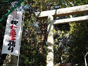 田丸神社(度会郡玉城町下田辺)
