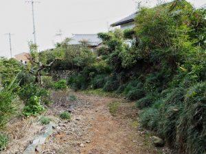 田乃家神社(皇大神宮 摂社)付近の小道