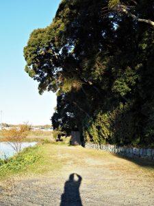 影が二人?、朝熊神社(皇大神宮 摂社)付近にて