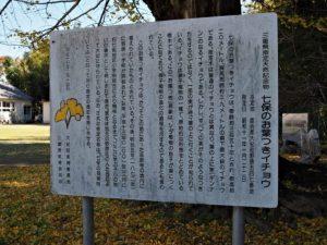 「七保のお葉つきイチョウ」の説明板