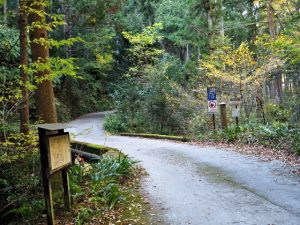 珍布峠ウォーキングコースマップ(5)地点