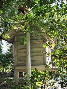 小俣神社(豊受大神宮 摂社)の隣には八柱神社の本殿