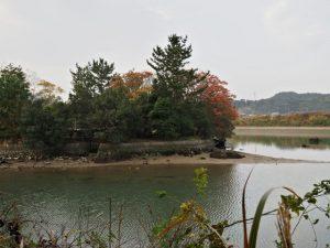 朝熊川と五十鈴川の合流点に鎮座する鏡宮神社(皇大神宮 末社)の社叢