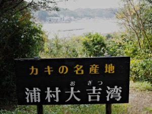 カキの名産地 浦村大吉湾の案内板