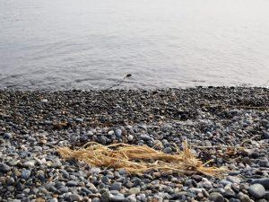 二船祭の名残、鎧崎の前之浜(鳥羽市国崎町)