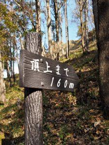 五箇篠山城跡(多気郡多気町朝柄)
