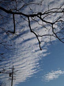 朝熊神社(皇大神宮 摂社)を訪れた朝の空
