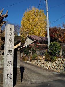 玉照山 慶藏院の紅葉(鳥羽市河内町)