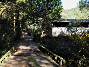 木田牧場(鳥羽市河内町)