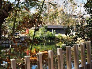 佛地院付近の池(名古屋市天白区音聞山)