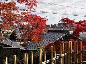 塩竈神社からの風景(名古屋市天白区御幸山)