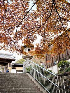 塩竈神社(名古屋市天白区御幸山)