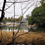 勾玉池の遊歩道から眺めた工事中のせんぐう館(伊勢市豊川町)