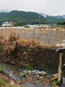 廣福寺の前を流れる川と田んぼ(度会町脇出)
