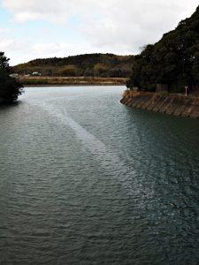 川の中に川が流れる朝熊川