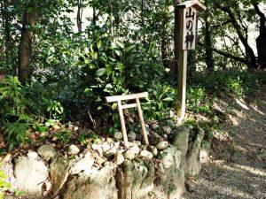 新たに巻かれた山の神の榊巻、松下社(伊勢市二見町松下)