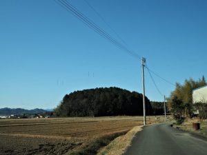 棒原神社(皇大神宮 摂社)の社叢