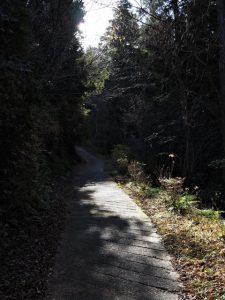 的山公園駐車場〜的山公園(度会郡玉城町山神)
