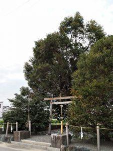 コドノ社(伊勢市御薗町高向)