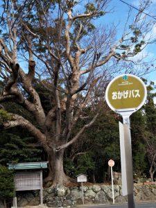 栄通神社付近の月待塔(伊勢市通町)