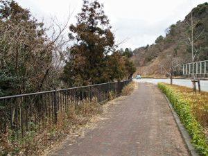 二見ケ浦トンネル付近(伊勢市二見町三津)