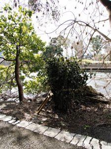 池畔にまつられている松下社の榊巻(伊勢市二見町松下)