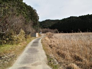 JR参宮線 松下駅付近で国道42号から湿地帯へ