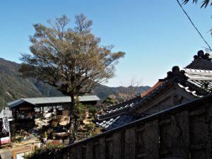那智山参道(那智大社・青岸渡寺)からの眺望