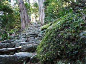 那智御瀧の遙拝所から「那智の滝前(熊野交通)」バス停へと続く石段