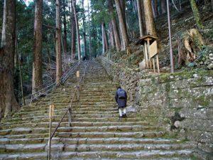 飛瀧神社の参道