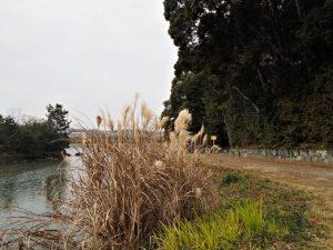 朝熊神社(皇大神宮 摂社)付近