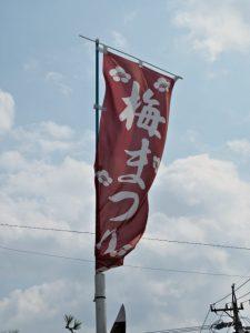梅まつりの幟旗、臥竜梅公園付近(伊勢市御薗町新開)